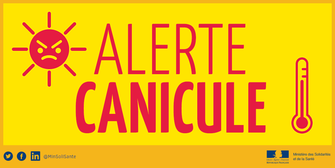 CANICULE COURS ANNULES